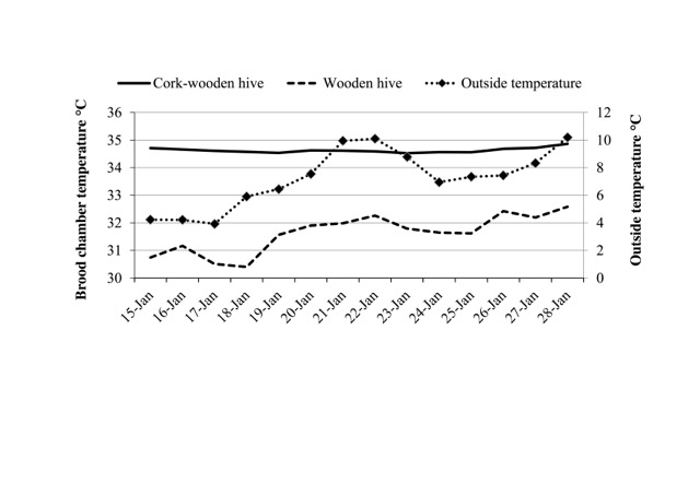 Comparison between daily variations of the environmental temperature and those inside the hives, made of wood and cork or wood only (I.Floris)
