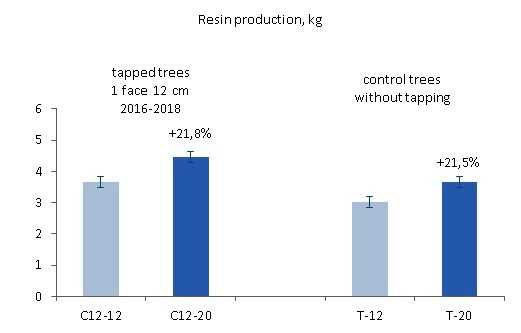 Resin production by wound size in previously tapped versus control trees