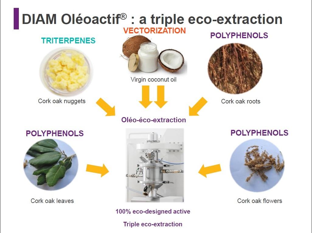 DIAM OLEOACTIF: a triple éco-extraction