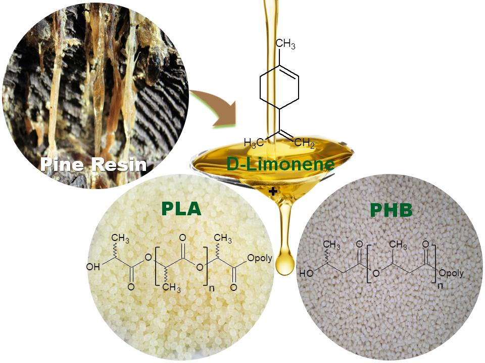 Schematic representation of the thermoplastic starch (TPS) preparation and the processing of TPS–resin blend formulations pine resin derivatives.