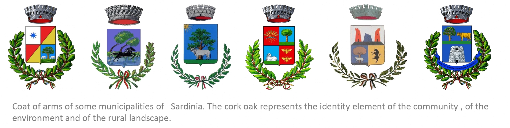 Coat of arms of some municipalities of Sardinia. The cork oak represents the identity element of the community, the environment and the rural landscape.