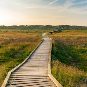 Footpath to the sea at the Gronant Dunes Nature Reserve, Denbighshire, Wales, UK