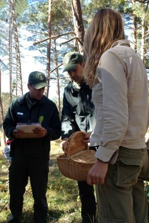 Control of mushroom picking activity in regulated areas