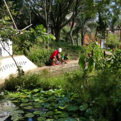Built pond to collect the water from the eight springs of the Água Preta creek — social ecological benefits in the heart of the city