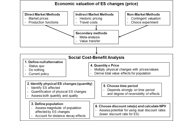 A concise guideline to economic valuation and social cost