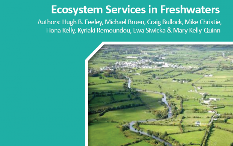 Literature review ecosystem services
