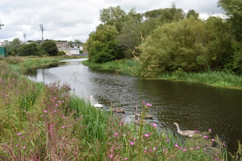 Green Infrastructure Strategic Intervention: Canal and North Gateway