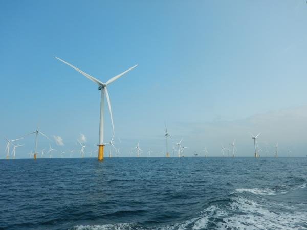 North Sea wind farms (c) RBINS