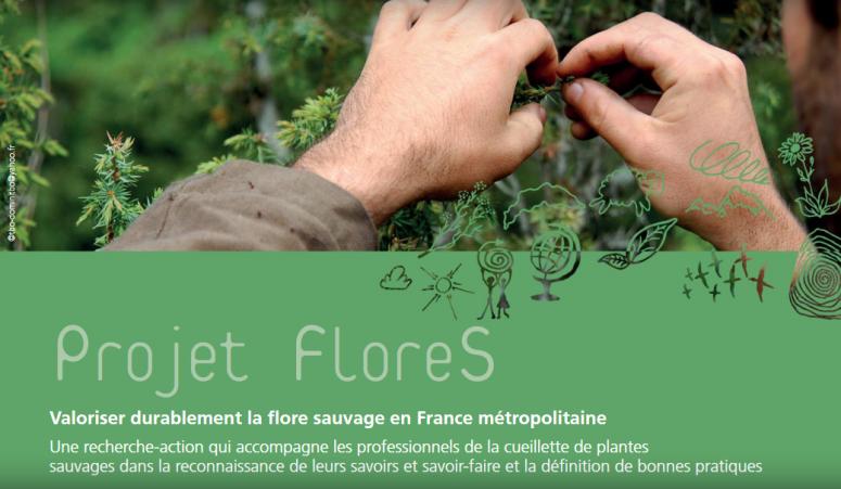 Project FloreS