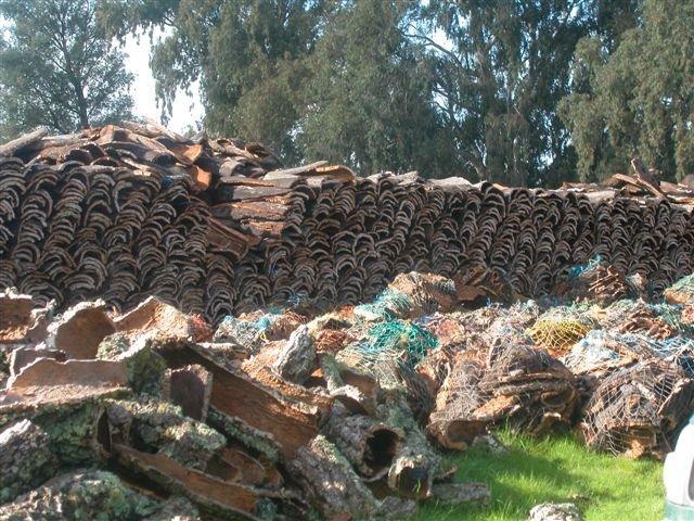 Cork pile in Portugal.