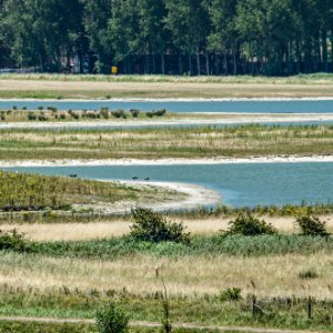 Municipality of Sluis, the Netherlands: newly developed tidal nature in combination with recreation and coastal defense at Waterdunen project