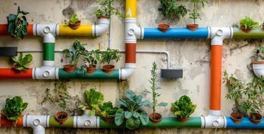 Creating Green Cities: inspiring stories from nature-based solutions innovators