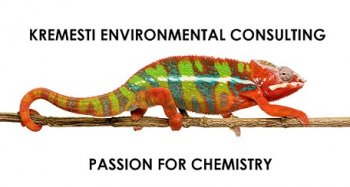 The Chameleon Represents the Different Technical Colors of our Expertise