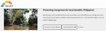 Protecting mangroves for local benefits, Philippines