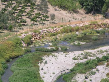 Riparian forest Restoration in Greece