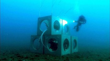 Artificial reefs - Prado bay (3)