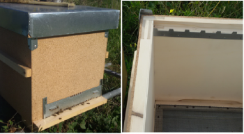 Experimental insulated beehive with cork panel and interior wall detail