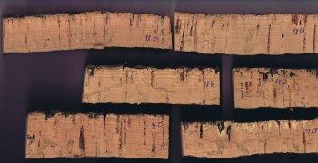 Cork samples and cork rings.