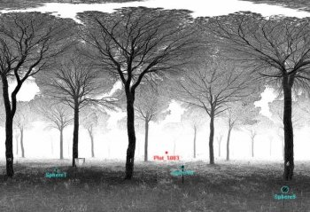 Point cloud obtained from a Terrestrial Laser Scan.