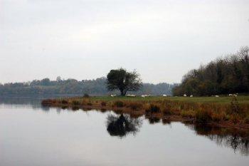 Lough Erne (c) Tim O'Higgins