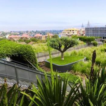 Urban green infrastructure