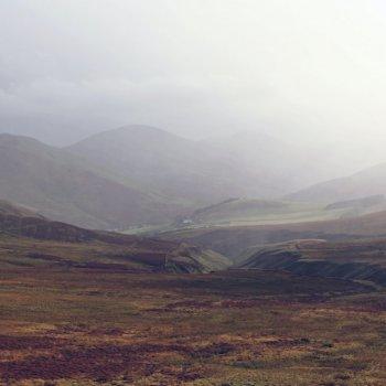 Peatland - Sean Paul kinnear, Unsplash