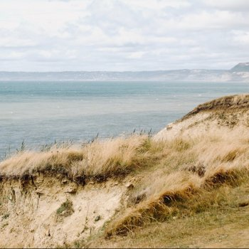 Riches of the dunes: Measuring and protecting coastal dune biodiversity through Nature-based Solutions