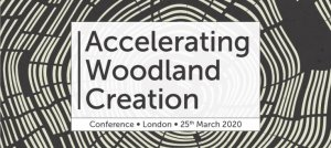 Accelerating Woodland Creation
