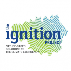 IGNITION project logo