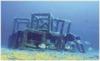 Artificial reefs - Prado bay (4)