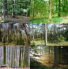 Impressions of demonstration sites in various countries of Europe (left to right / top to bottom: Germany, Czech Republic, Germany, Sweden, France, Belgium).